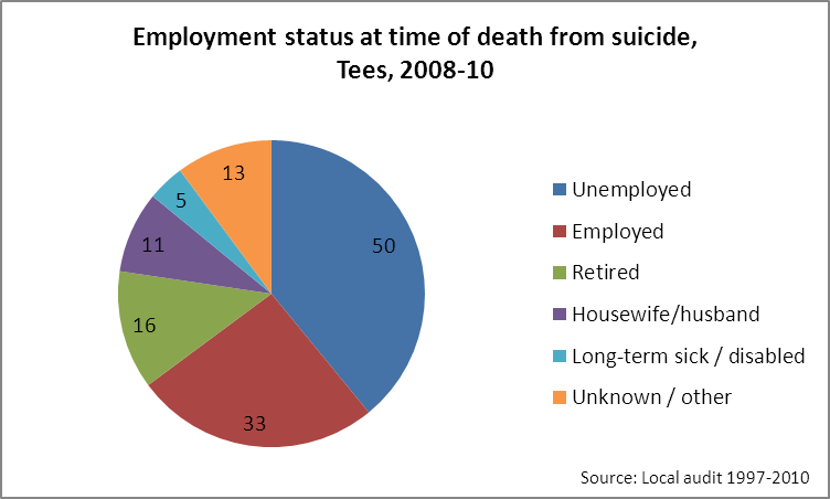 Tees suicide audit - employment status